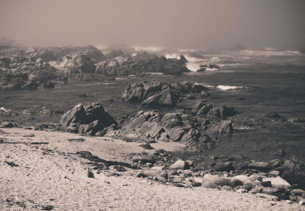Monterey.Bike.4