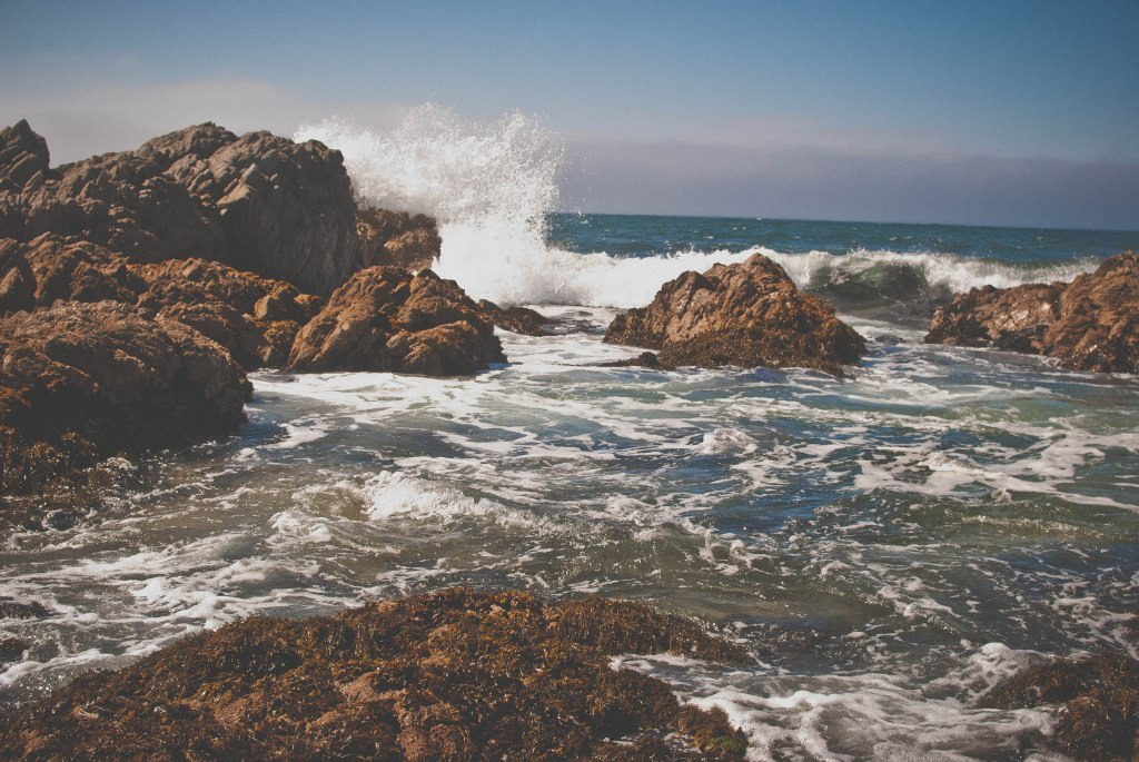 Tide pools and crashing waves
