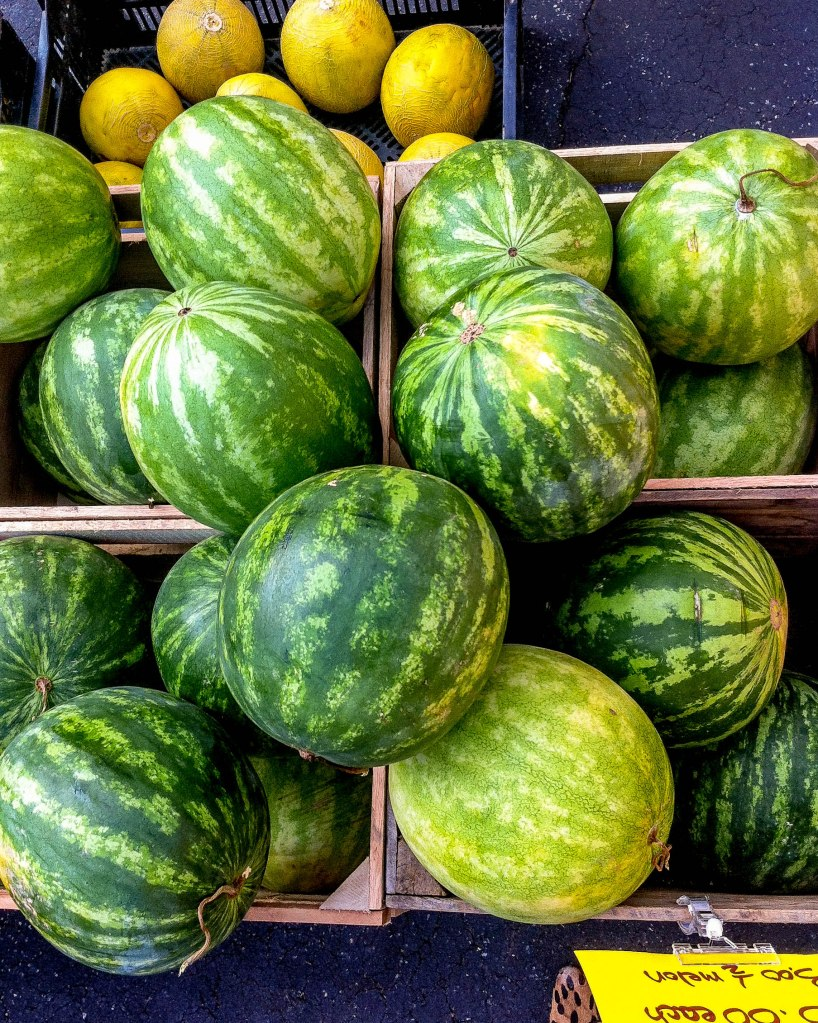 Watermelons at the market last week