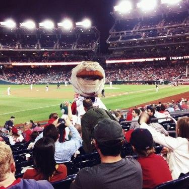 Great seats at the baseball game