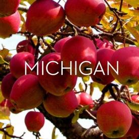 Michigan.travel