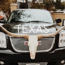 Texas.button