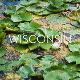 Wisconsin.button